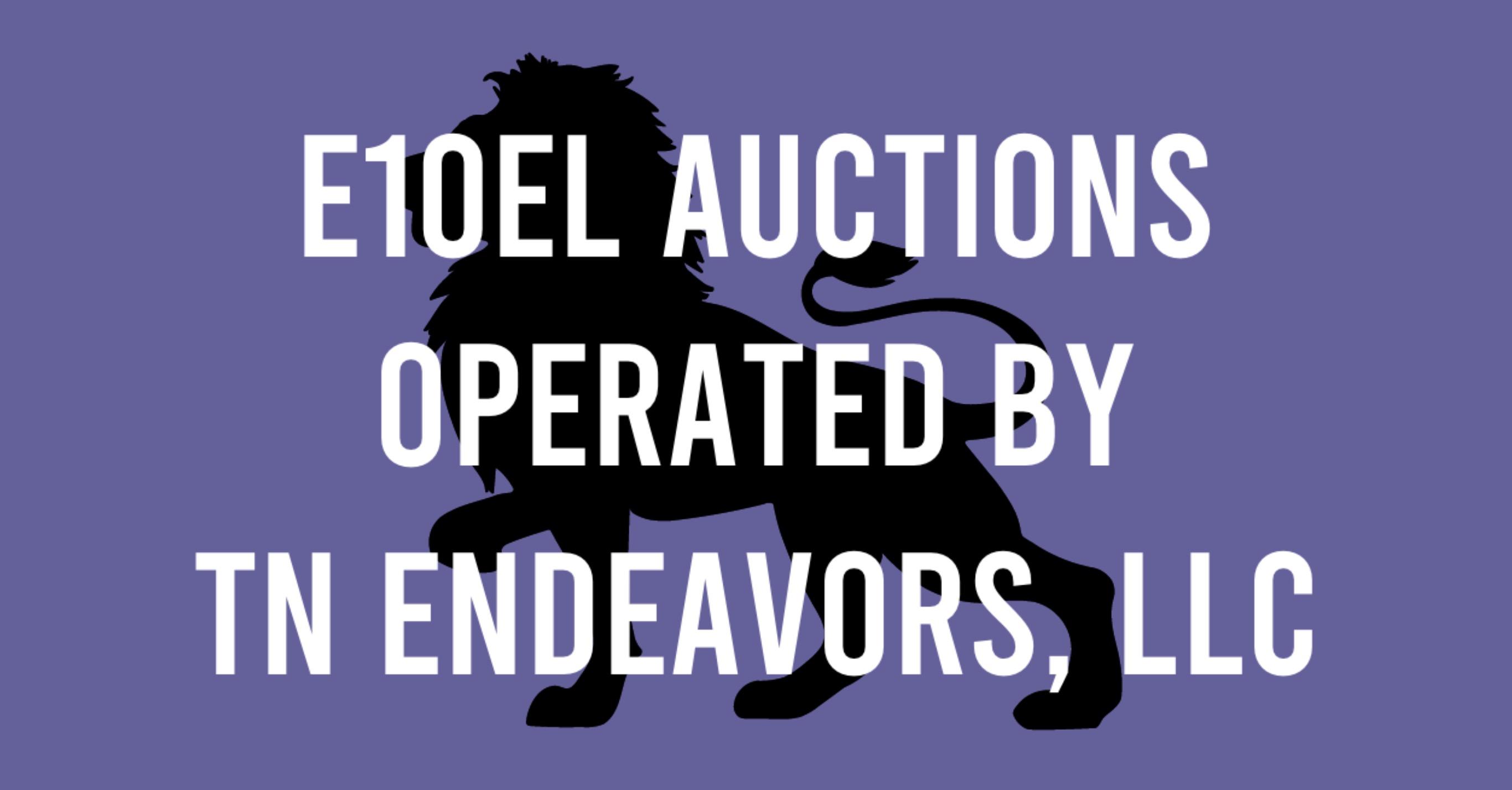 E10EL Online Auctions | Auction Ninja